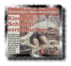 "Faksimile aus ""Münchner Wochenblatt"""